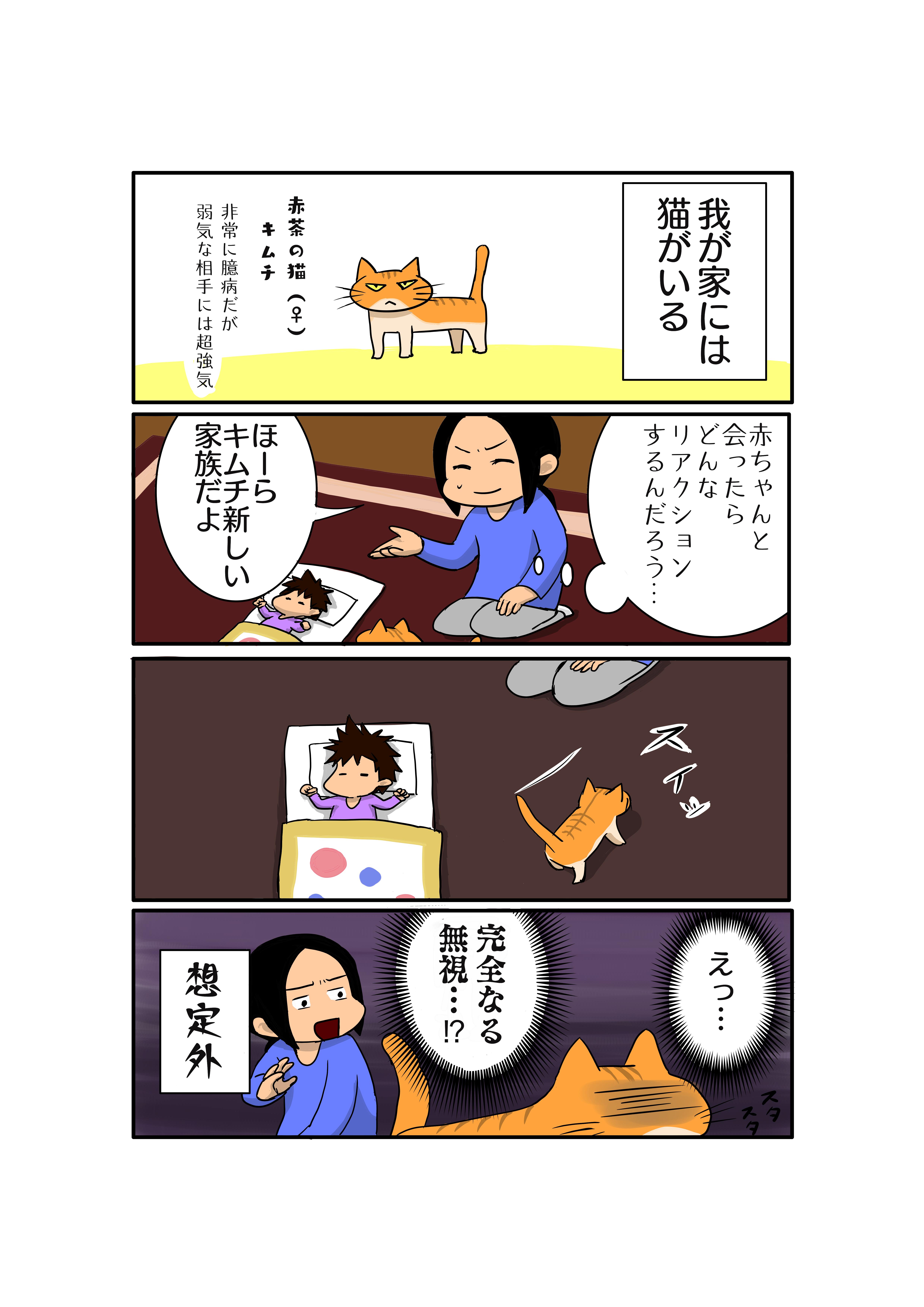 ねここど‐育児マンガ‐ところで俺の猫を見てくれ‐新生児‐猫‐初対面‐リアクション‐無反応